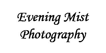 Evening Mist Photography